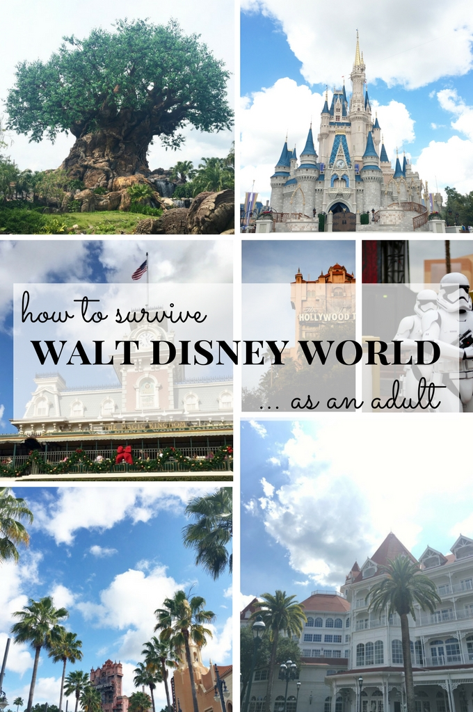 How to survive Walt Disney World as an adult