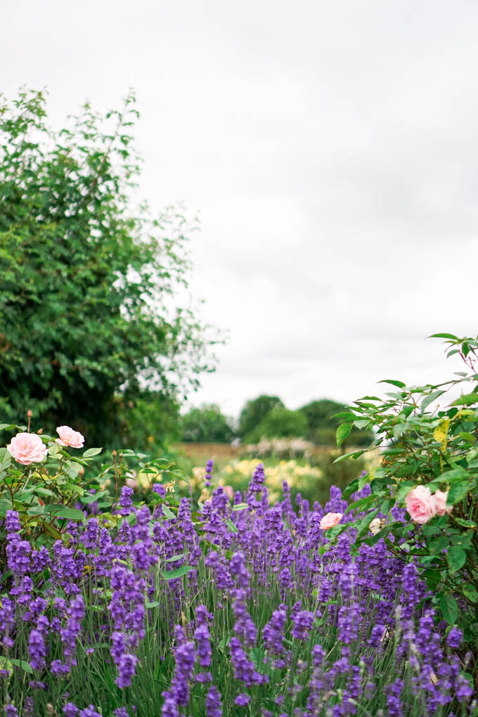 Traditional English Garden | Hampton Court Palace Gardens | Things to do at Hampton Court Palace